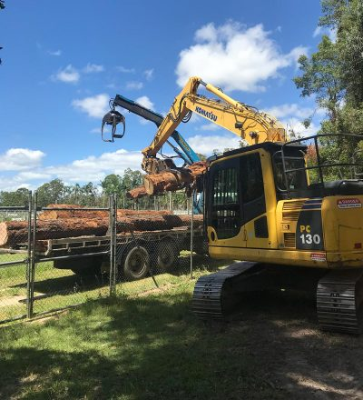 Heavy Machinery Loading Tree Trunk